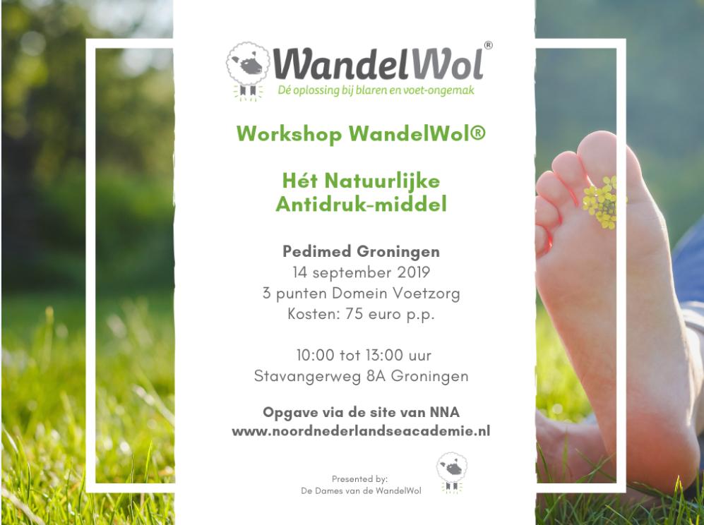 Workshop WandelWol